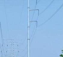 220kV双回路直线杆
